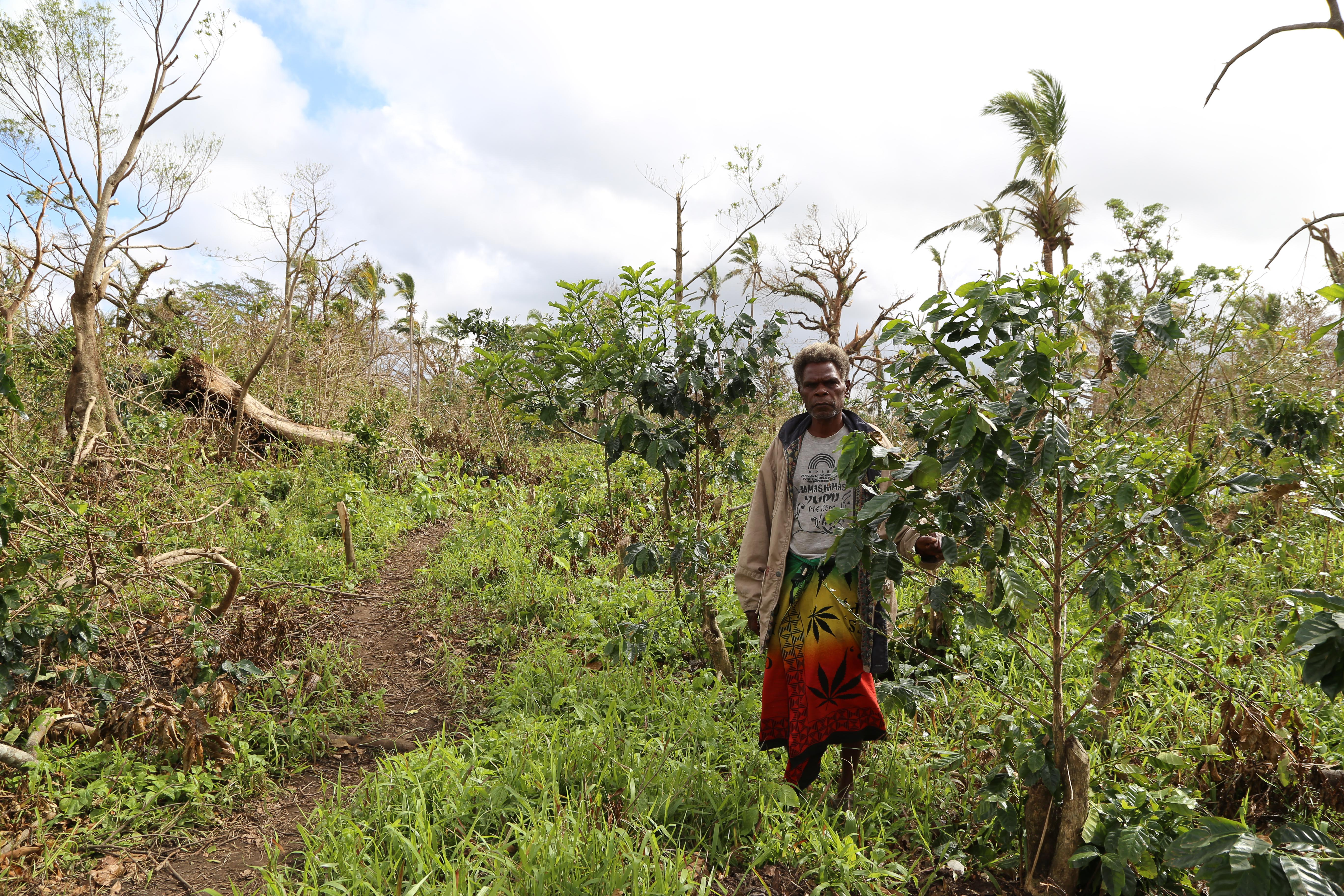 Jacob Tallah surveys the few coffee plants he has left